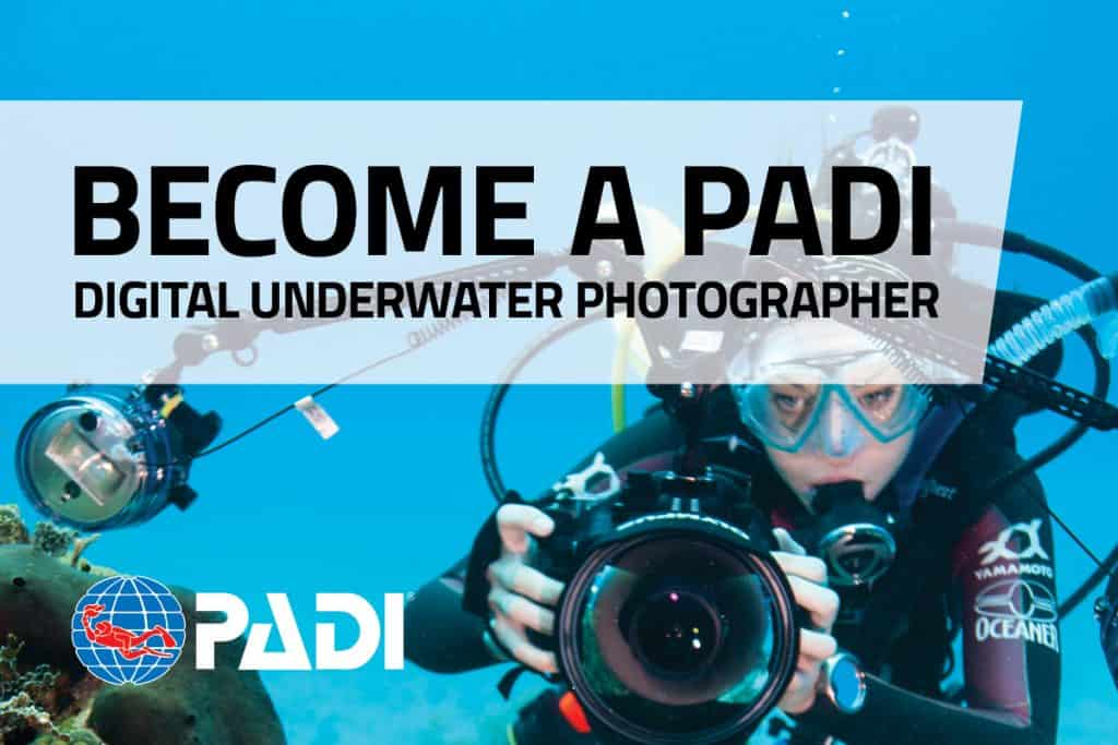 Underwater Videographer on Malapascua Island