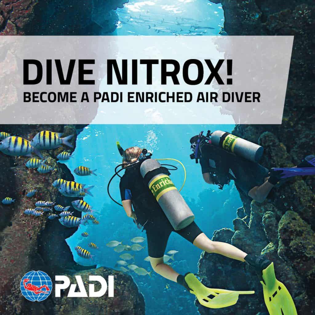 Thresher Shark Divers Malapascua logo