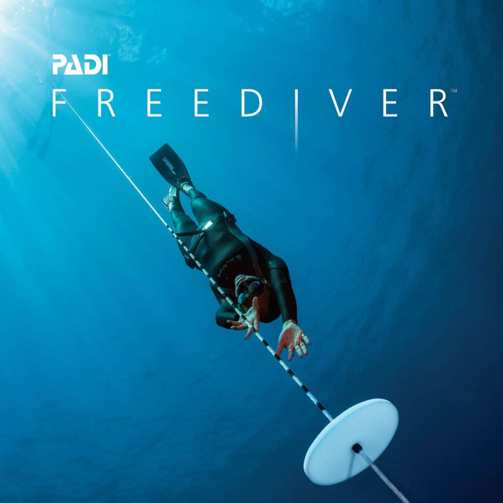 Free diving with Thresher Shark Divers Malapascua