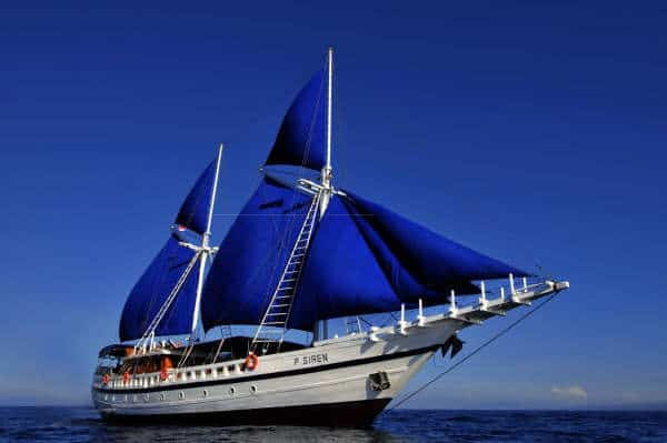 Philippines Diving Trip
