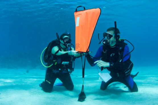 Search and Recovery Dive on Malapascua Island