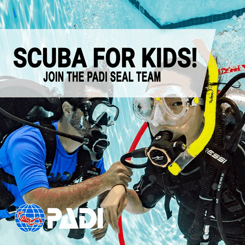 PADI Seal Team program Thresher Shark Divers Malapascua
