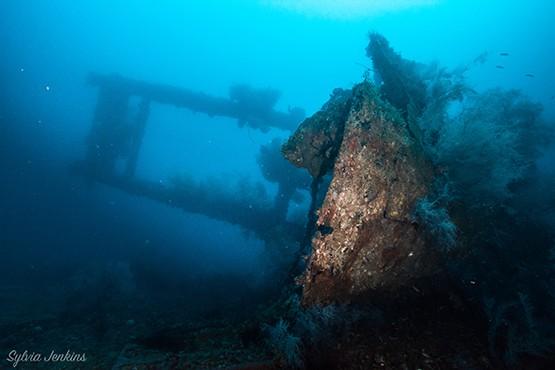 Wreck Diving on Malapascua Island