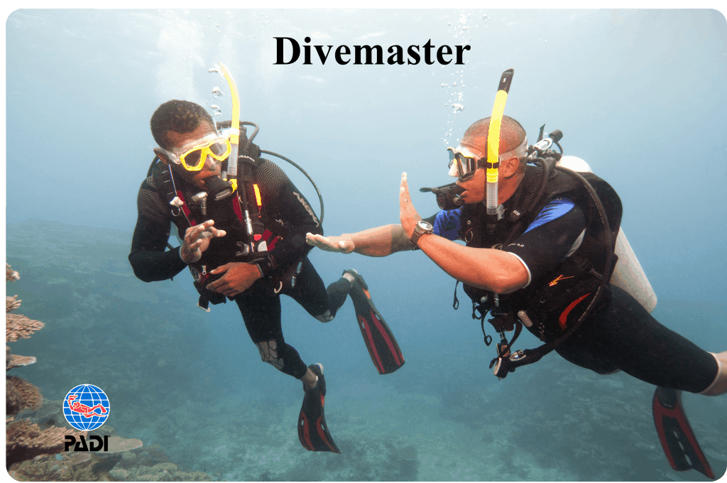 PADI Divemaster course Malapascua