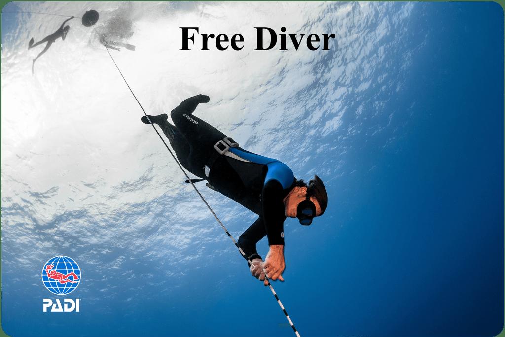 PADI Freediver course Malapascua