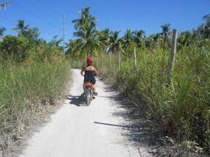 Explore Malapascua